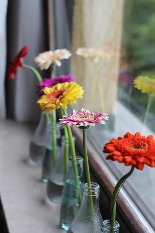 Mein Sommer - bunte Sommerblumen auf der Fensterbank - diephotographin