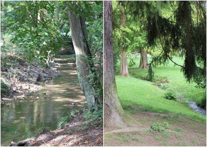 Mein Sommer - Wasserläufe im Wiesbadener Kurpark und im Nerotal - diephotographin