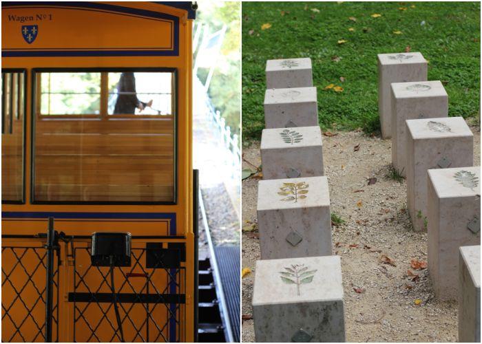 Mein Sommer - Nerorbergbahn und im Nerotal - diephotographin
