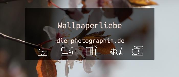 Wallpaperliebe im April – inkl. free download