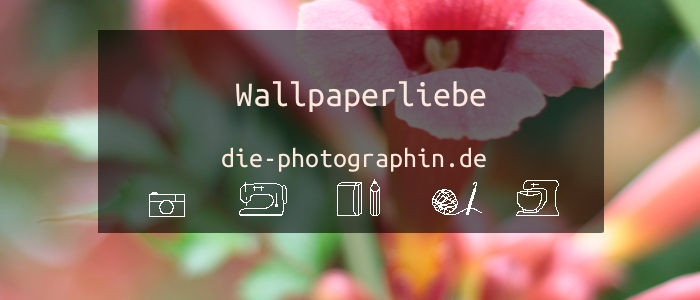 Wallpaperliebe im August – inkl. free download