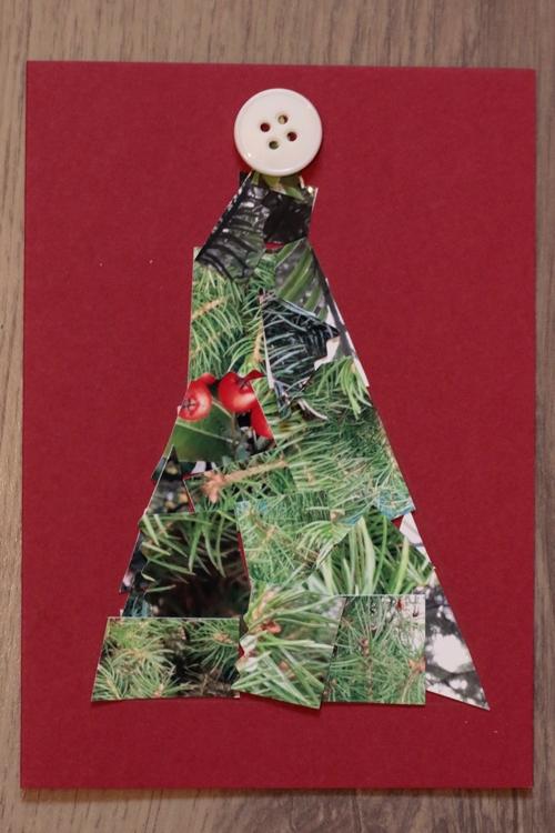 DIY Foto Weihnachtskarte - Karten mit nur einem Knopf - diephotographin