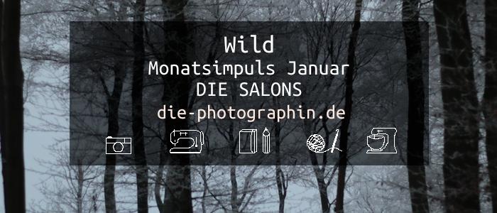 Wild – Monatsimpuls Januar von Die Salons