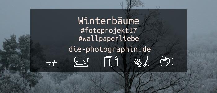Winterbäume #fotoprojekt17 #wallpaperliebe