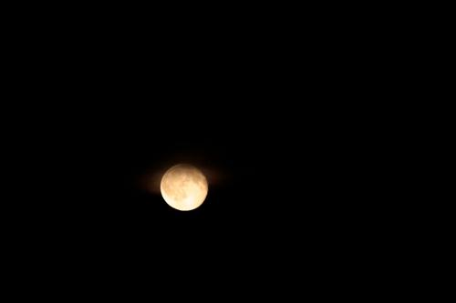 Der Mond am 21. Juli 2016 über Wiesbaden - #fotoprojekt17 - nachts - diephotographin