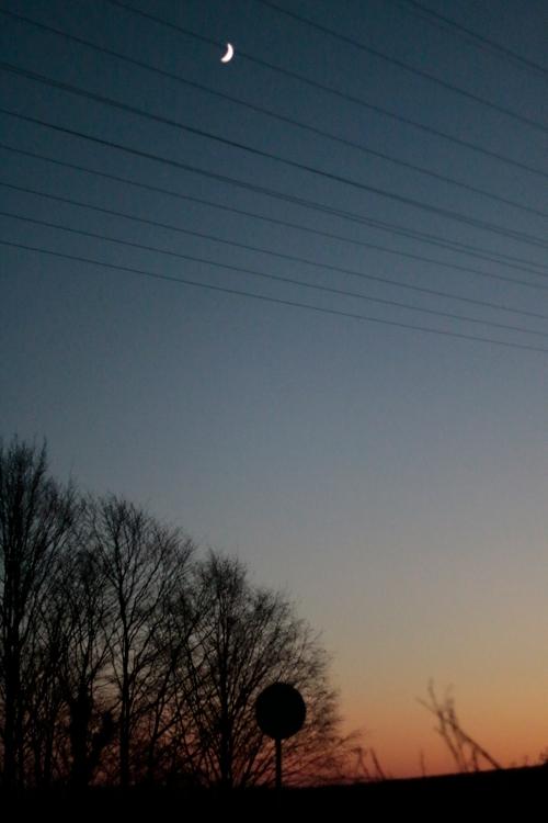 In den Weinbergen Anfang Dezember im Rheingau - #fotoprojekt17 - nachts - diephotographin
