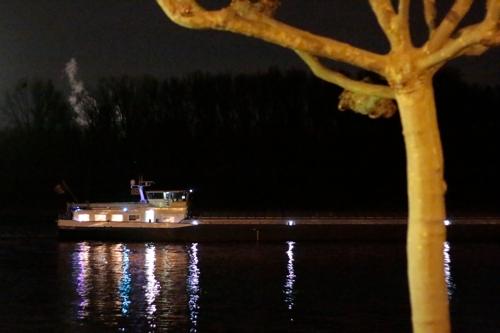 Der Rhein am Schloss Biebrich in Wiesbaden - #fotoprojekt17 - nachts - diephotographin