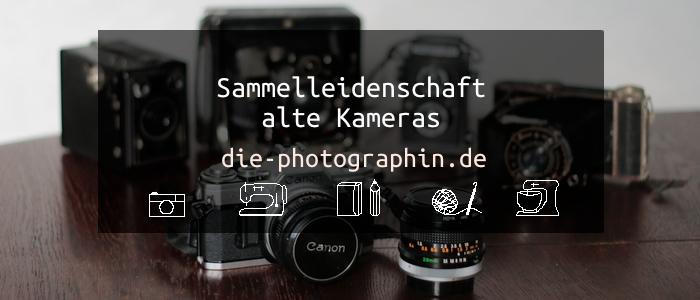 Sammelleidenschaft – alte Kameras