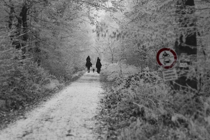 Zwei Reiter im Winterwald, Wiesbaden - Color-Key #fotoprojekt17 - diephotographin