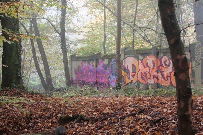 Alte Reste einer Mauer im Wald bei Wiesbaden - #fotoprojekt17 - diephotographin