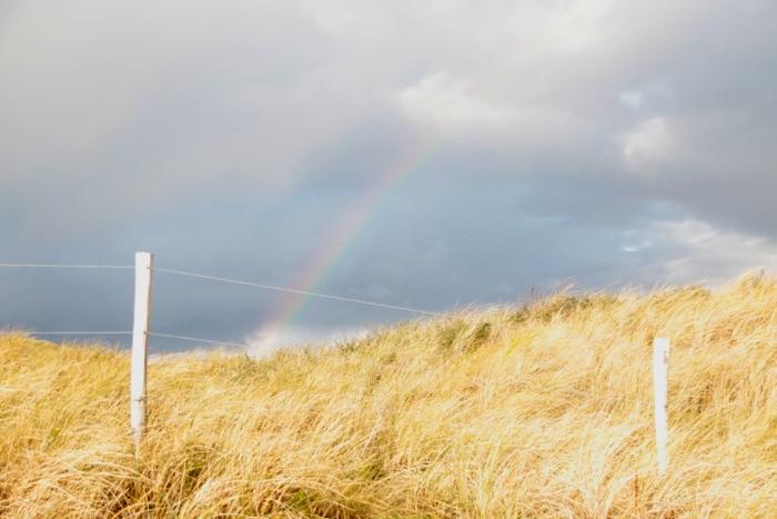 Ein Regenbogen über den Dünen in den Niederlanden - #fotoprojekt17 - diephotographin