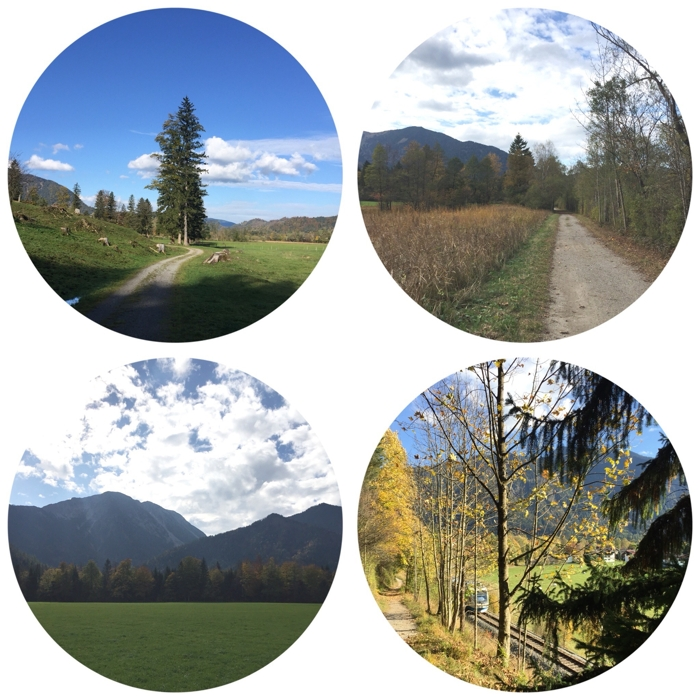 #12von12 - Wanderung durch Wiesen und Wälder und zum Abschluss noch die BOB sehen - #9von12 #10von12 #11von12 #12von12 - diephotographin (mit Klick aufs Bild kommt ihr zu Instagram)
