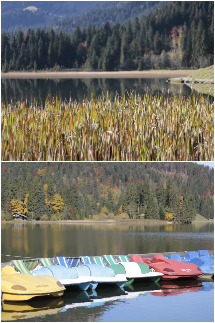 Rund um den Spitzingsee - #fotoprojekt17 Herbstspaziergang - diephotographin