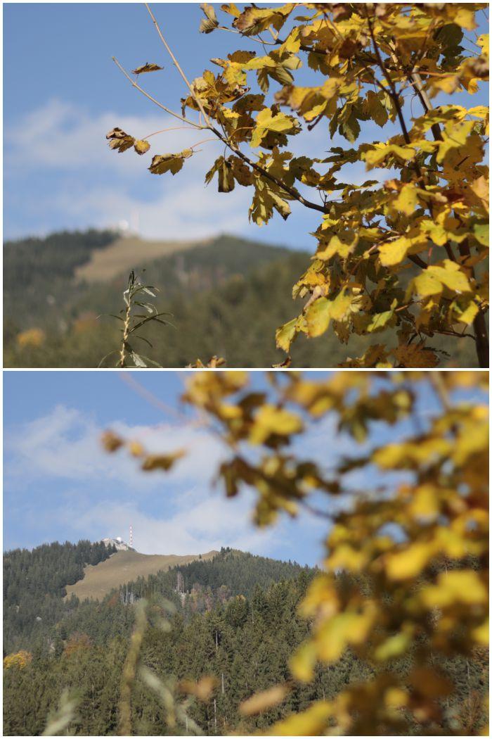 Blick zum Wendelstein vom Wendelstein-Männlein-Weg - #fotoprojekt17 Herbstspaziergang - diephotographin