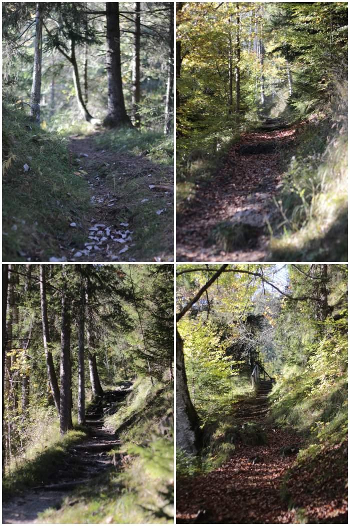 Auf dem Wendelstein-Männlein-Weg - #fotoprojekt17 Herbstspaziergang - diephotographin