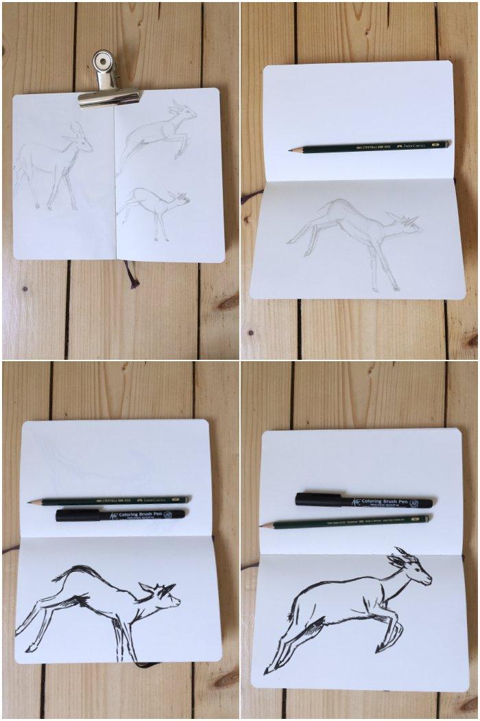 Antilopen im Themenraum Bewegung mit Bleistift und schwarzen Pinselstift gezeichnet - Zeichenkurs Museum Wiesbaden - diephotographin