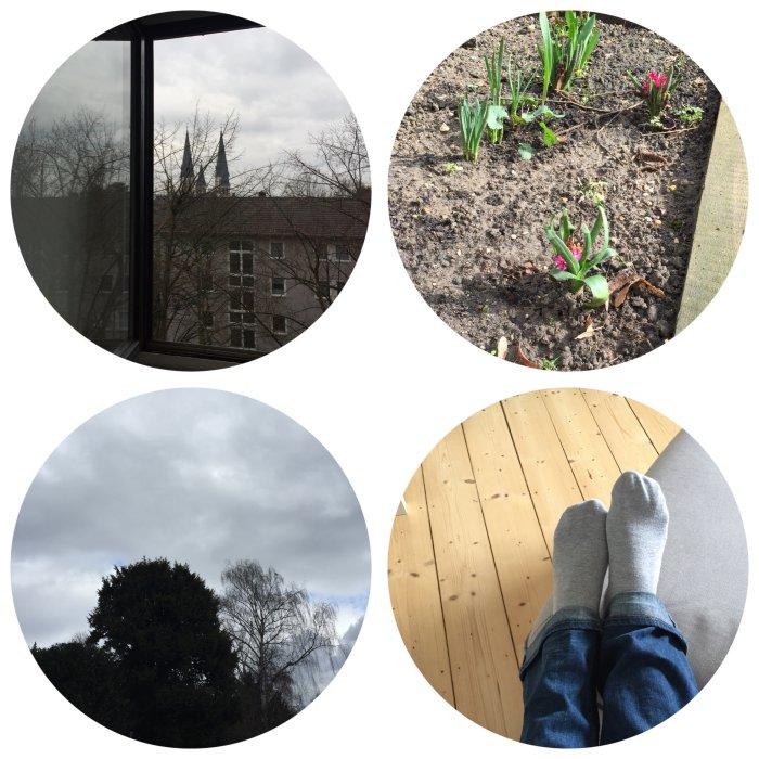 Mein 12. März in 12 Bildern - Frischuft in die Wohnung lassen, dem Aprilwetter im März zuschauen und mittags mal die Füße hochlegen - diephotographin