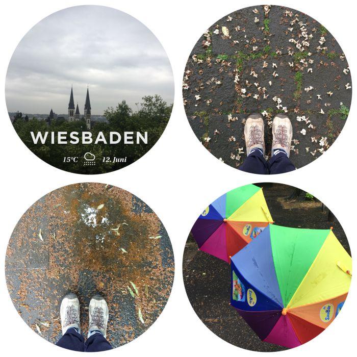 Unterwegs im leichten Sommerregen in Wiesbaden - 12 von 12 Juni 2018 - diephotographin