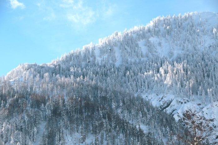 Verschneite Berge - Winter in Bayern - Increase Creativity