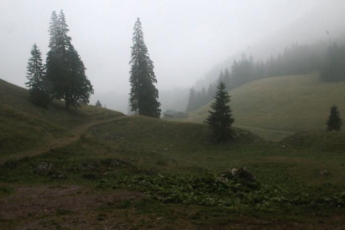 Sommeralm im Nebel - Sommer in den Bergen in Bayern - Increase Creativity